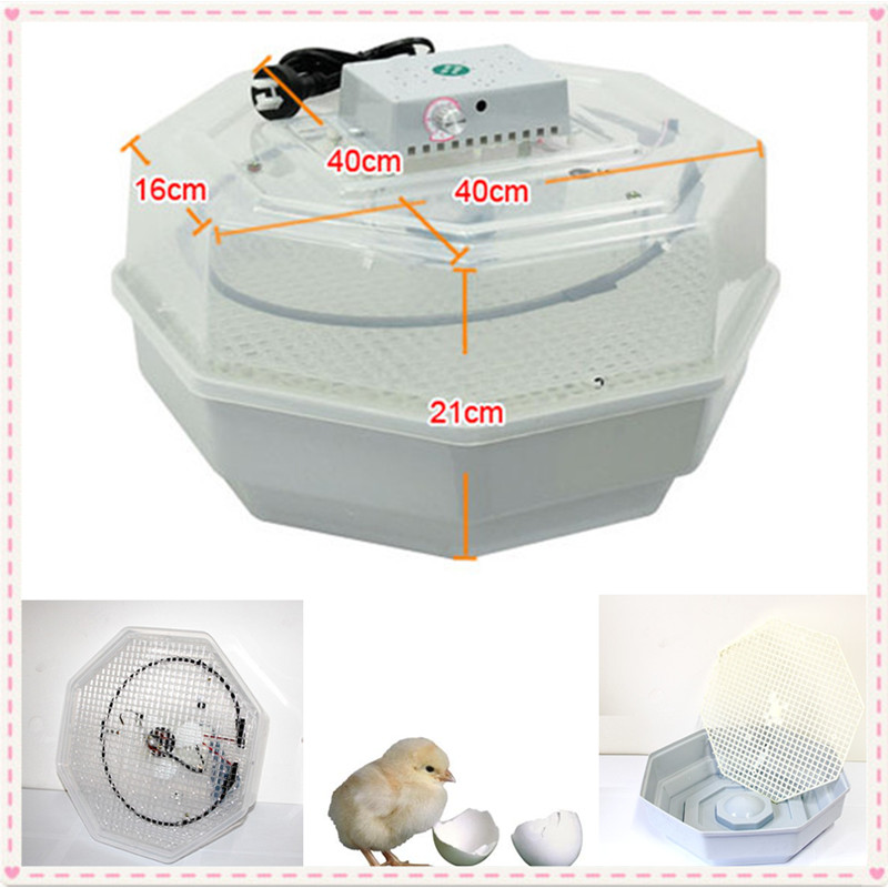 More than 95% hatching rate egg incubator energy saving and multifunction 95