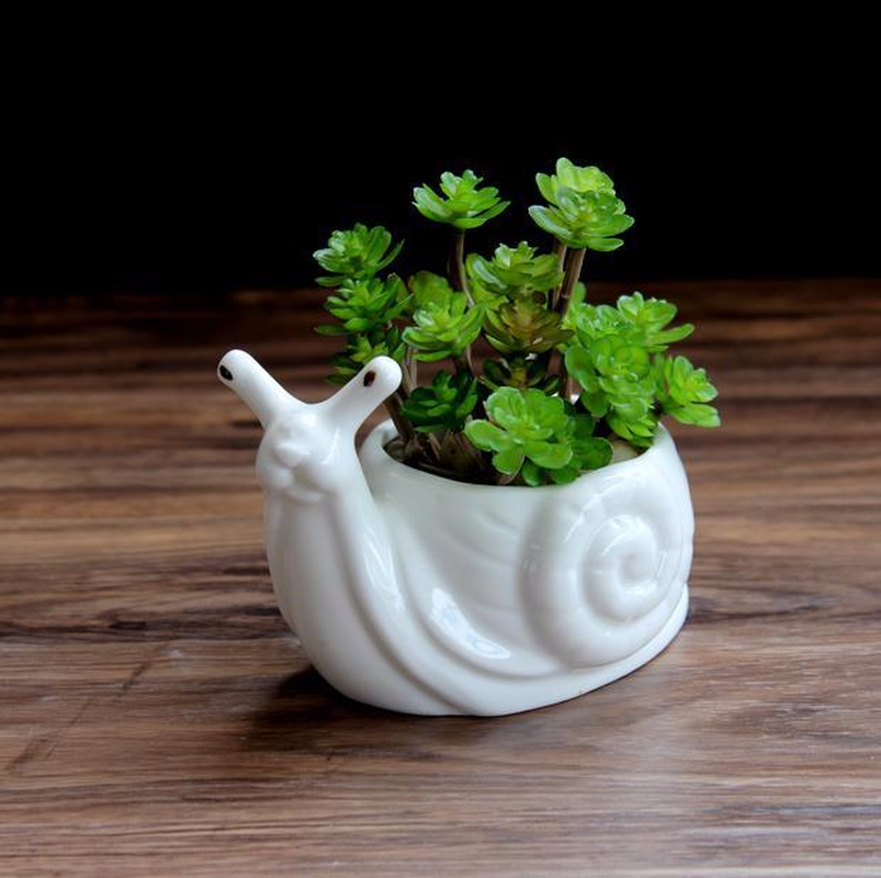 Garden Supplies Reasonable Noolim 1pcs Resin River Snail Succulent Pots Resin Cartoon Pastoral Succulent Planter Pot Home Office Tabletop Garden Decoration Garden Pots & Planters