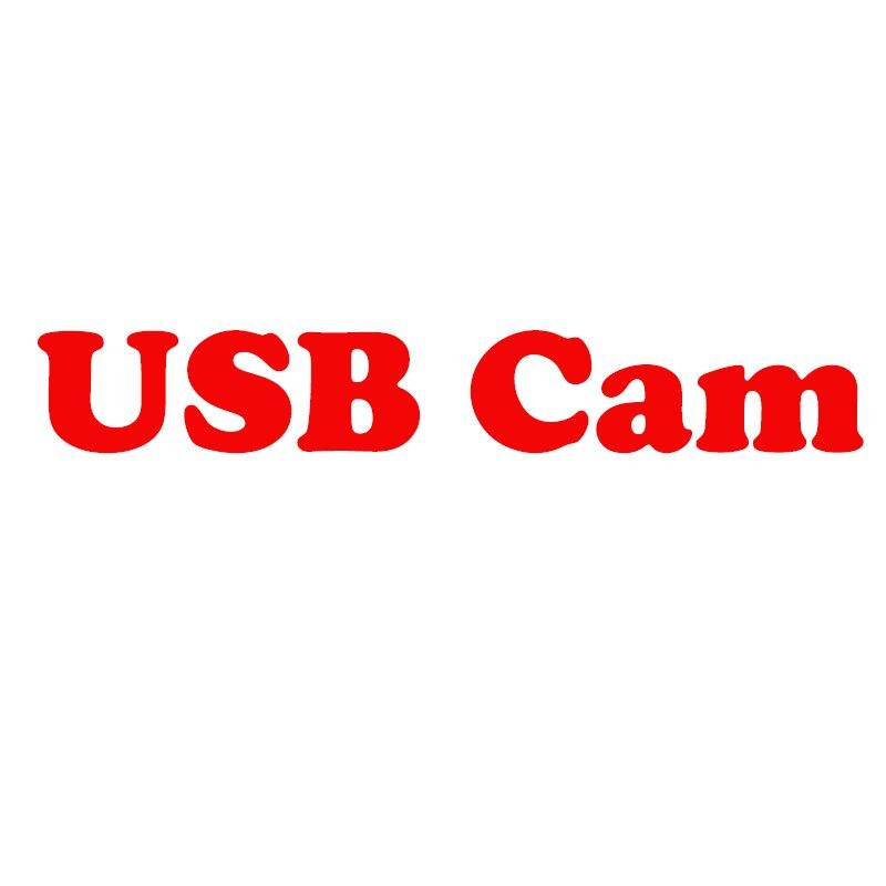 Cámara USB