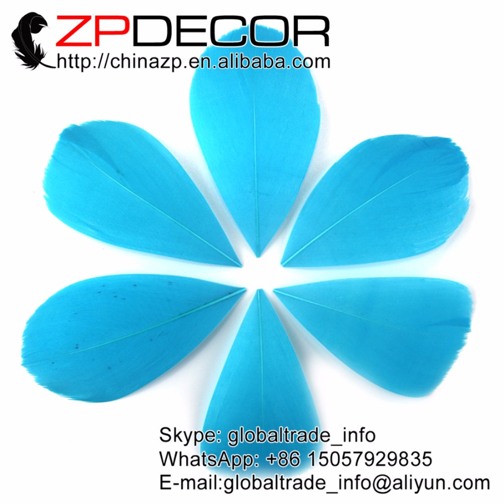 ZPDECOR 3~7cm 200Pieces/lot Dyed Sky Blue Goose Feather Petal Trimmed for Hair and Festival Decoration