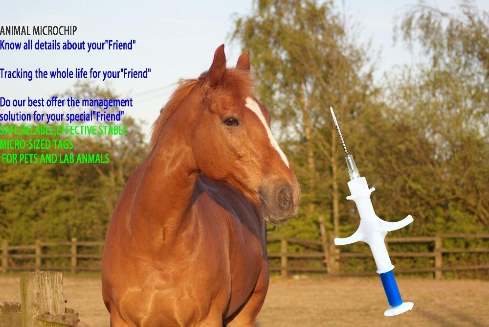 100pcs FDX-B 1.4*8mm 134.2KHz Pet Rfid Veterinary Transponder Syringe for animals chip:Pig Cow Cattle Horse Dog Fish Dragonfish