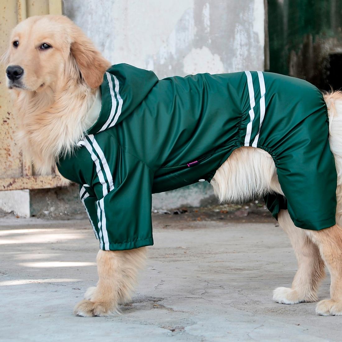 Best Rated Dog Raincoats