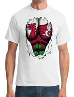 Wales Welsh Dragon Flag Superhero Ripped Effect Mens T Shirt