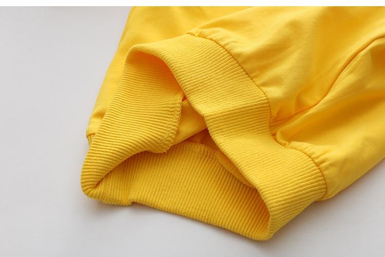 2018 Spring Autumn 2-10 11 12 Years Old Teenager Children Patchwork Fake 2 Pcs Baby Kids Basic Sweatshirt For Girls 11 12 Years (25)