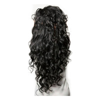 13X6 Lace Front Human Hair Wigs For Women Pre Plucked 150% Density Loose Wave Brazilian Lace Front Wig Honey Queen Remy