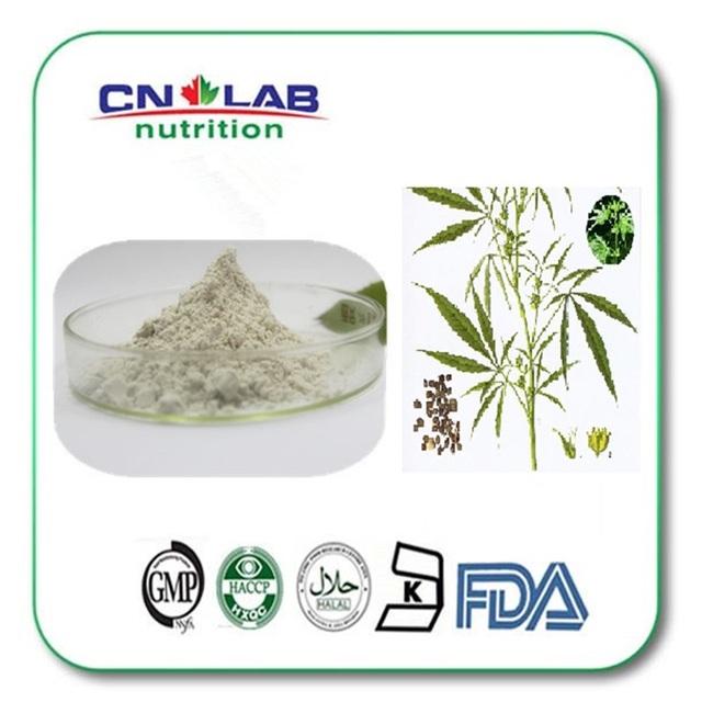 50% pó de proteína de cânhamo em grande volume tamanho made in China