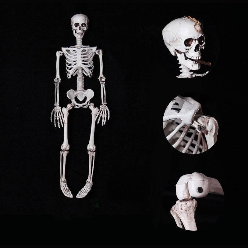 1 pc 90 cm/170 cm Vie Taille Halloween Squelette PVC Faux Squelette Humain Modèle Horreur Hanté Accessoires de Maison halloween Party Décoration