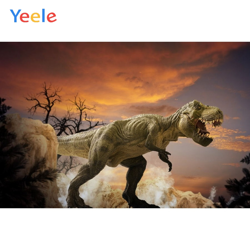Yeele Vinyl One Dinosaur Open Mouth Children Birthday Party Photography Background Child Baby Photographic Backdrop Photo Studio