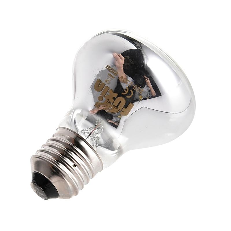 25/50/75/100w Mini Reptile Daylight Lamp Thermal Light Lamp For Snakes Lizards Tortoise E27 Reptiles Amphibian Animal Lighting #5