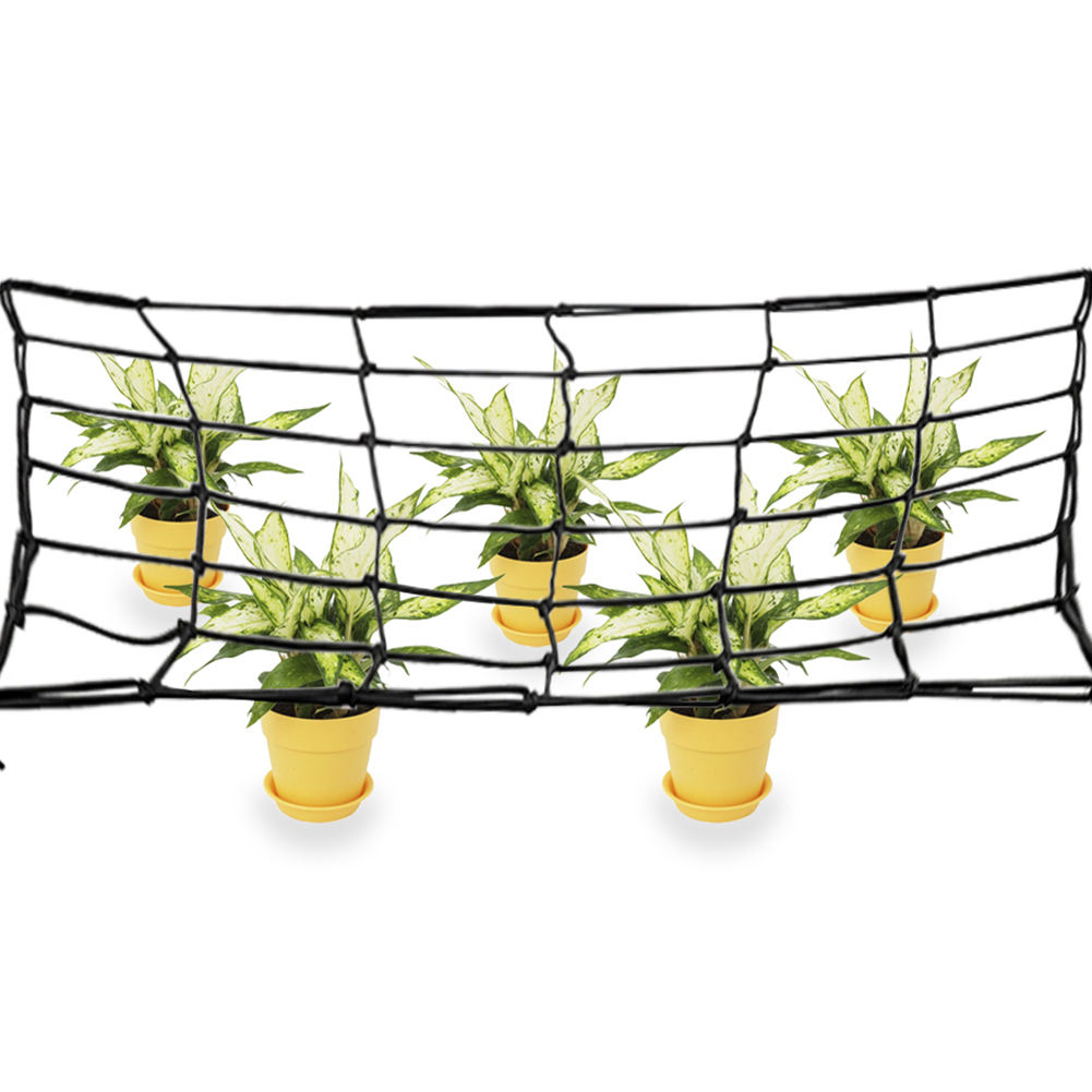 80X80cm Elastic Rubber Garden Trellis Net Support For Vegetable Climbing Vine Plants Garden Netting Flower Plant Support Net