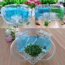 3D муравьиная ферма образовательный лабиринт система живого кормления муравьев среда обитания мир домашних животных вилла