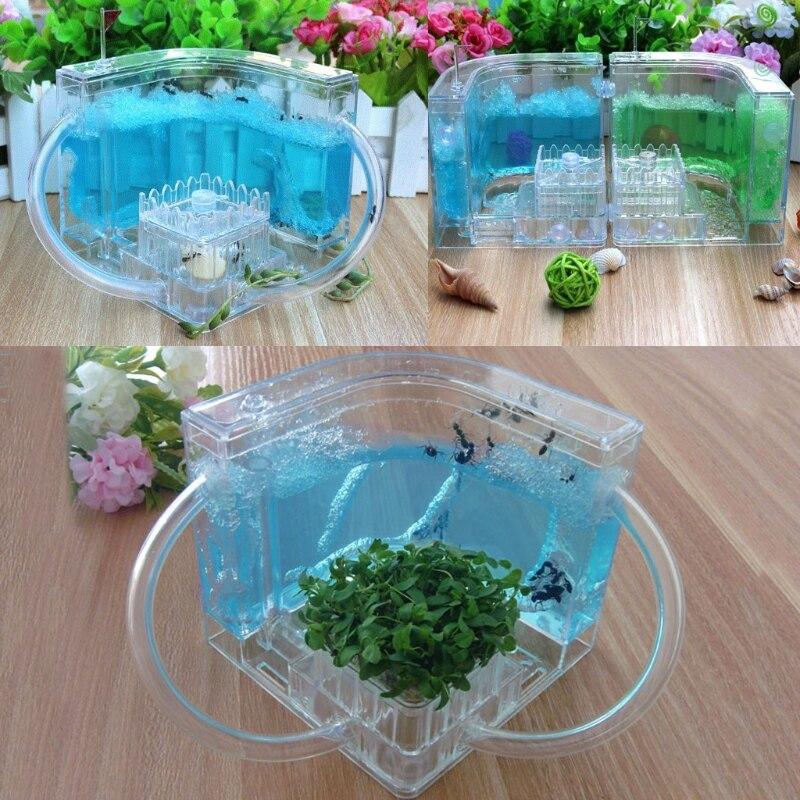 3D Ant Farm Educational Maze Live Feeding System Ants Habitat World Pet Villa for hamster(China)