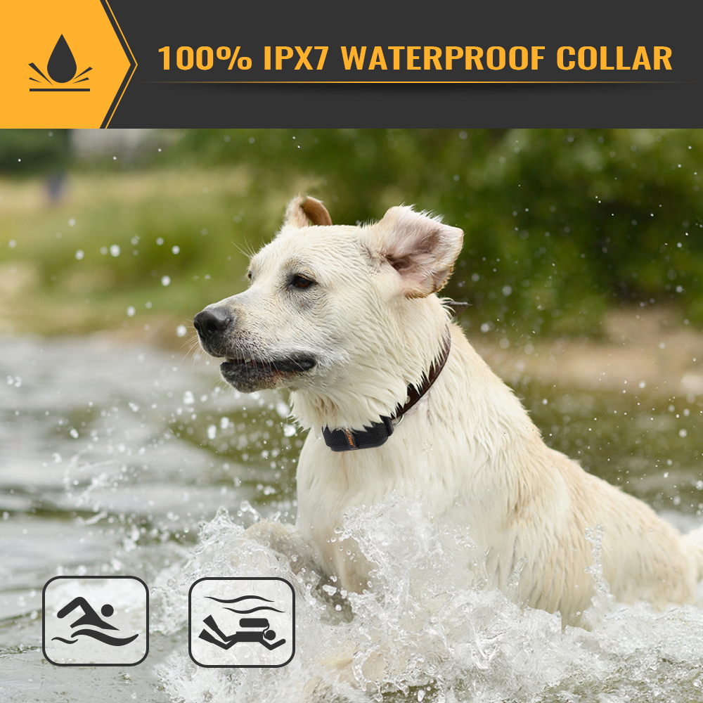 PETRAINER PET856 Waterproof and Anti Barking Dog Training Shock Collar with Vibration and Sound 3