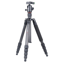 Kingjoy CC-289+QE-1T Angle Adjustment Light-weight Carbon Fiber Gentle Weight Twist Monopod Tripod Set for Canon Sony Nikon