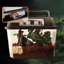 Reptile Terrarium Breeding Incubating Box Spider Frog Box Lizard Snake Turtle Tank Cylinder Cage Fish Tank For Eggs Incubation
