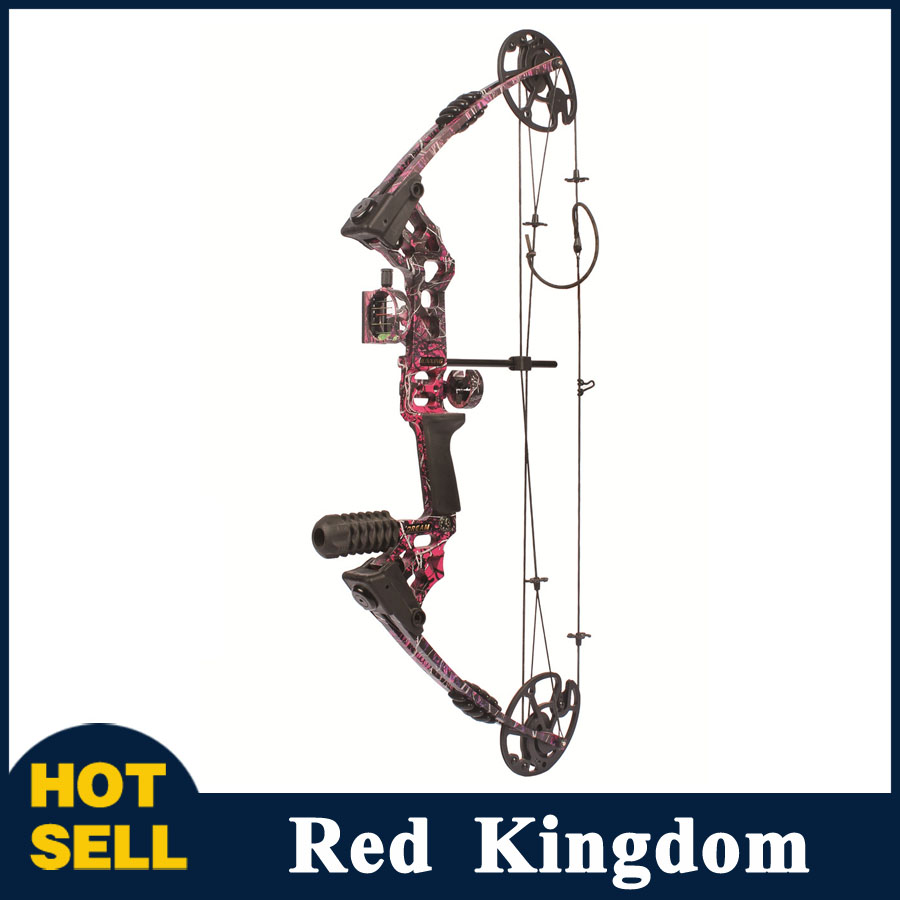 20-70 Lbs Compound Bow 17-29 Inch by Aluminum Alloy in 3 Color for Outdoor Archery Hunting Shooting