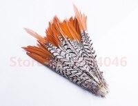 Schöne hohe qualität 20 10-12 zoll (25-30 CM) kupfer huhn roter spitze, verwendet für schmucksachen, hüte, etc.