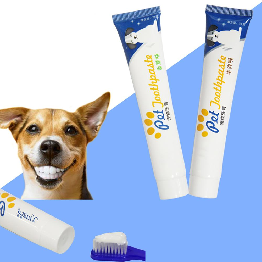 1PC Edible <font><b>Dog</b></font> Puppy Cat Toothpaste Teeth Cleaning Care Oral Hygiene Pet Supplies <font><b>Accessories</b></font> image