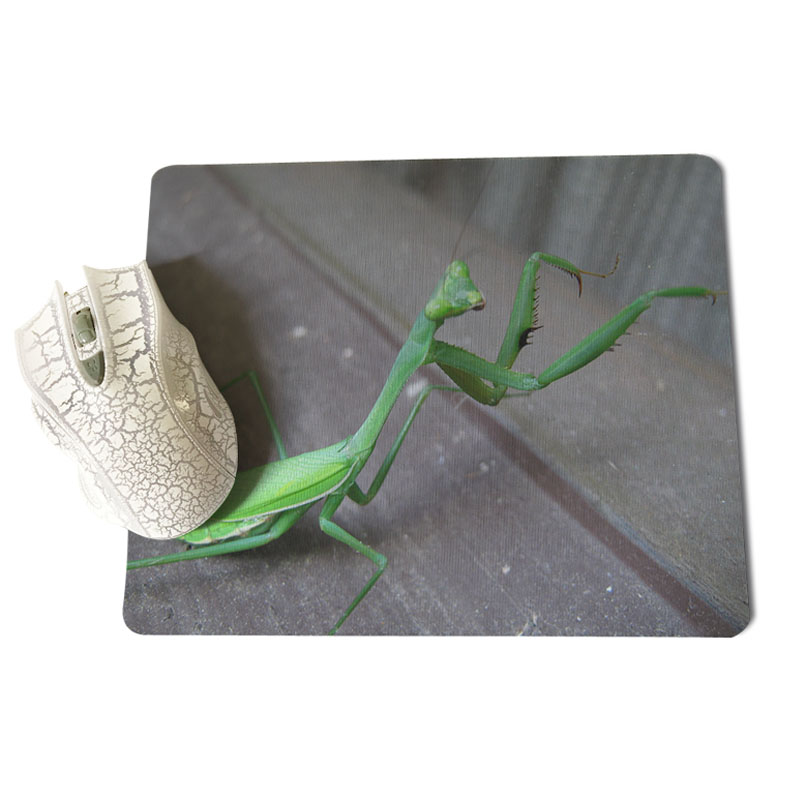 MaiYaCa My Favorite Predator Customized laptop Gaming mouse pad Size for 180x220x2mm and 250x290x2mm Rubber Mousemats