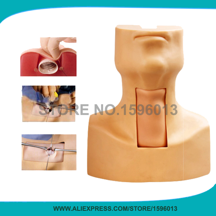 купить High Quality Thyrocricocentesis Tracheostomy simulator, Tracheostomy Training Simulator model