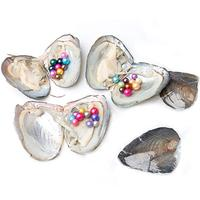 5PC Pearl Oysters Freshwater Cultured with 10 Mix Color Round Love Wish Oysters with Pearls Inside 10 Colors 6.5 8mm