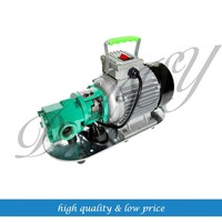 Cast Iron WCB 30/50 Electric Oil Pump Gear pump High Vscosity Gear oil pumps