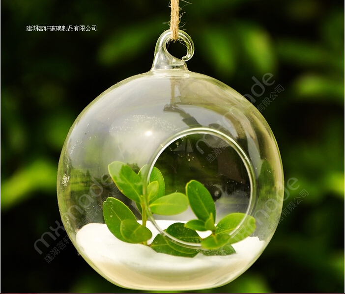 Cheap 6pcslot Diameter 8cm Hanging Glass Vase Home Decoration
