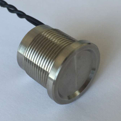 ELEWIND flat head stainless steel piezo push switch (19mm,PS193Z10YSS1,Rohs,CE) кошельки бумажники и портмоне petek s15028 als 10