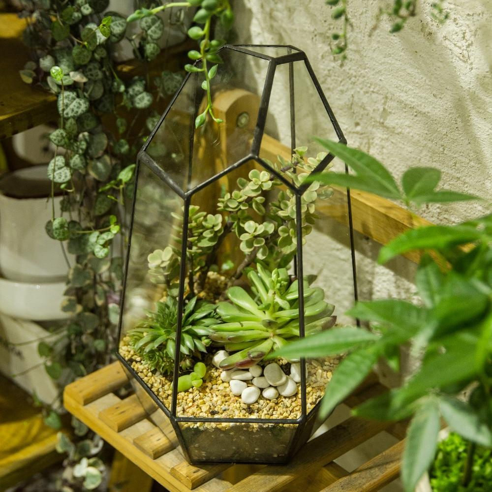 Nepravilno Sukulentno Geometrijsko Staklo Terarij Wardian Case Miero - Vrtni proizvodi - Foto 2