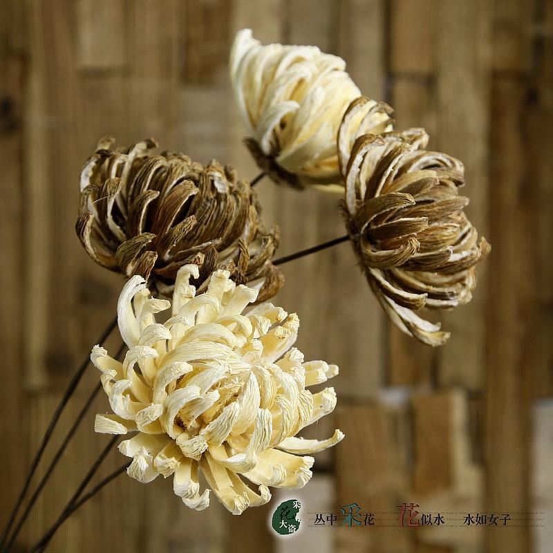 Alta qualit rami secchi decorativi acquista a basso prezzo rami secchi decorativi lotti da - Rami secchi decorativi ...