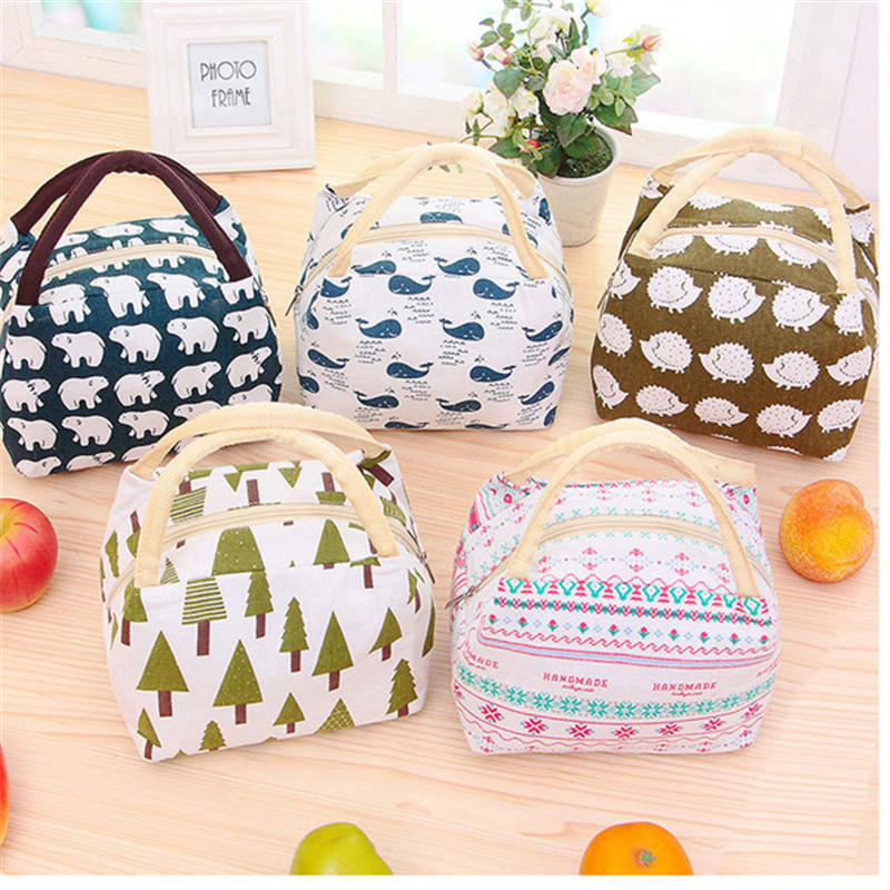 Mrosaa 1pc Lady Lunch Box Tote Bag Travel Picnic Cooler Insulated Handbag Handheld Lunch Food Fruit Storage Containers for Kids