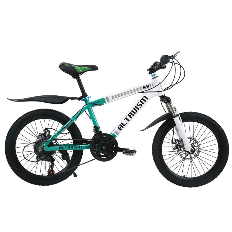 Altruism K9 Kids Bike 21 Speed Aluminum Bicycle For Boys -4612