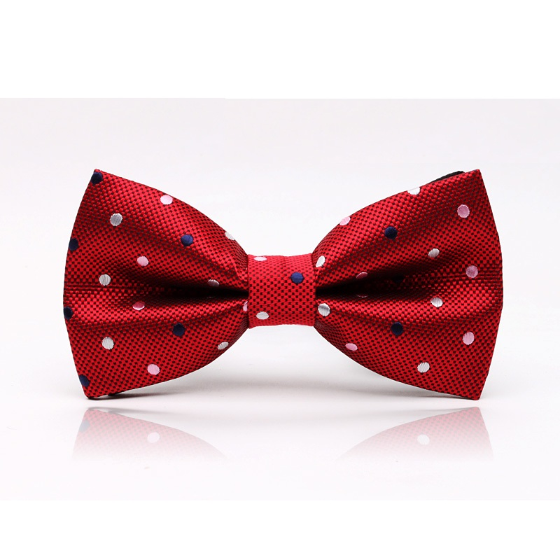 HOOYI 2018 polyester mens Dot bowtie bow tie knot
