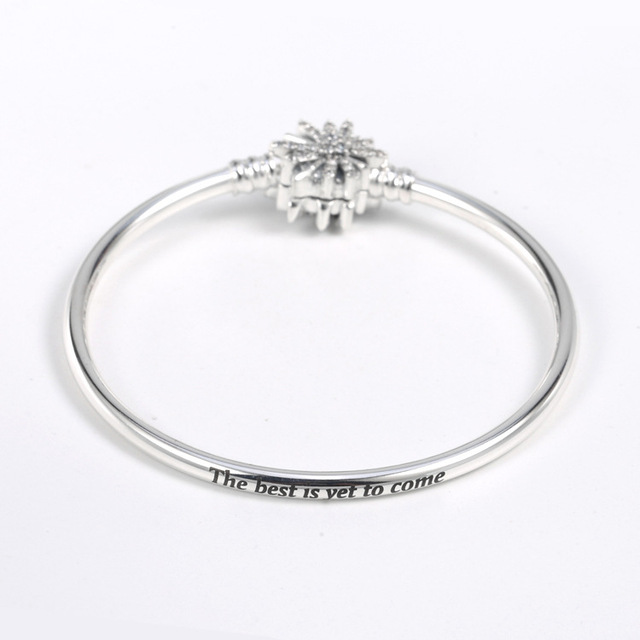 925 Sterling Silver Moments...