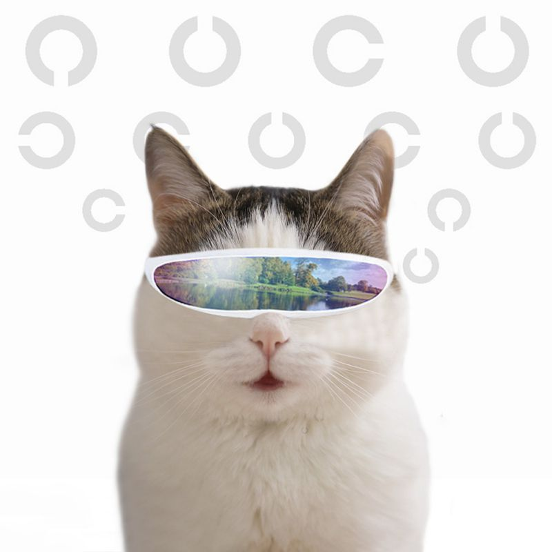 Funny Eye-wear Photography Cat Glasses Cool Sunglasses For Cats Halloween Cosplay Photos Props Pet Grooming Accessories Supplies