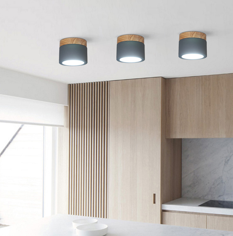 ceiling light xiang (16)