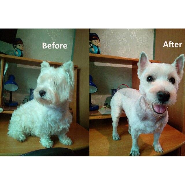 Baorun Professional Pet Dog Hair Trimmer Animal Grooming Clippers Cat Cutter Machine Shaver Electric Scissor Clipper 110-240V AC 4