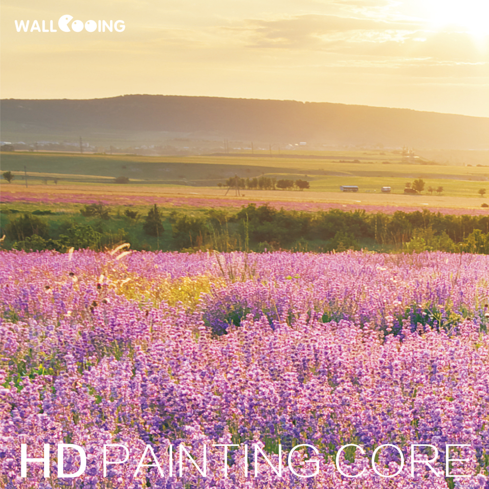5 piece modern home pictures wall decor HD print on canvas art beautiful landscape paintings flower Purple lavender flower field