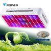 Fitolampa Green House Plant LED Plant Grow Light 1200W 900W 720W 360W 24W 2000W Double Chips
