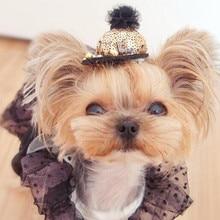 Fashionable, cute baseball hat puppy hair clip / pin
