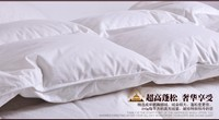 AU double size 180*200 cm duvet filled Goose feather & down 19 oz tog value 4.5 for summer 150 gsm factory price wholesale