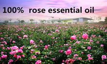 Pure Natural Rose Essential Aromatherapy Oil