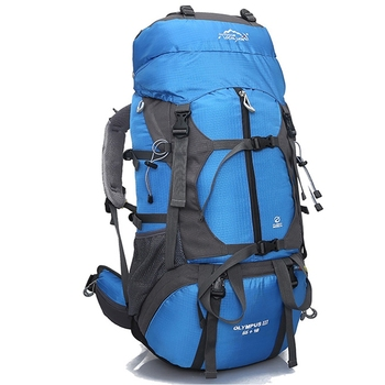 Professional Mountaineering Bag Outdoor Travel Backpack Hiking Camping Sport Bag Climbing Rucksack Large Capacity 65L