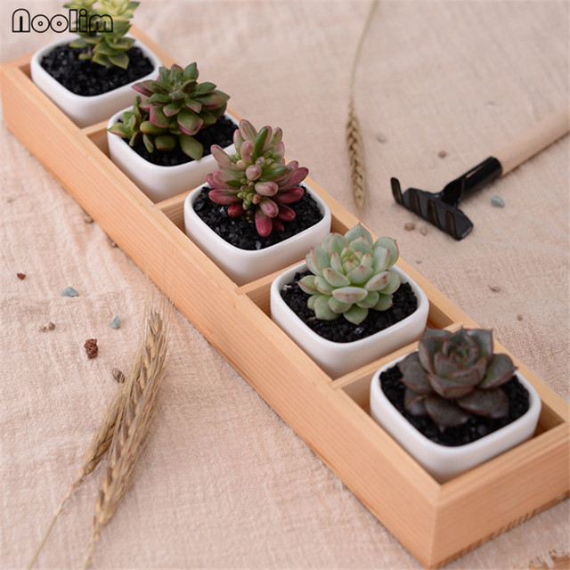 Noolim Set Of Modern Decorative Small White Square Ceramic Succulent Plant Pot 5 Flower Pots With 1 Wooden Tray Box Home Decor