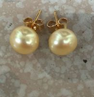 Huge A Pair Of 8 9mm South Sea Gold Stud Pearl Earring Jewerly Free Shipping