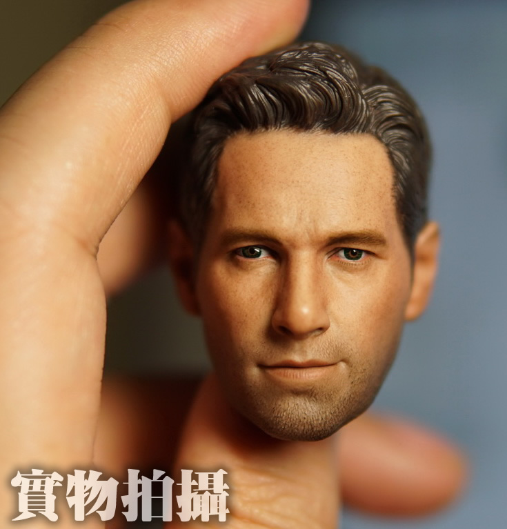 1/6 scale figure doll head shape for 12 Action figure doll accessories Paul Rudd Ant-Man Scott Lang head carved 16B2628 1 6 scale figure doll head shape for 12 action figure doll accessories iron man 2 whiplash mickey rourke male head carved