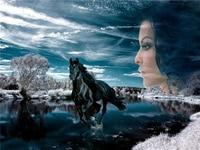 Rhinestone Painting Crystal Home Decor DIY 5d Diamond Painting Animal Horse Beauty 3D Cross Stitch Pattern