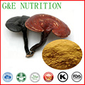Factory supply high quality natural Reishi Mushroom Ganoderma lucidum/herb extract/ polysaccharide 20%100g