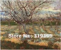 Linen Canvas Oil Painting reproduction, Apricot Trees in Blossom by vincent van gogh,Free DHL Shipping
