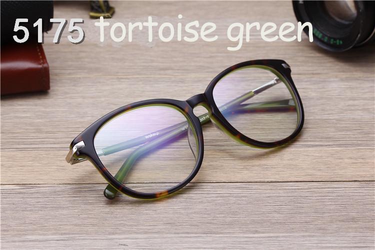 tortoise green1